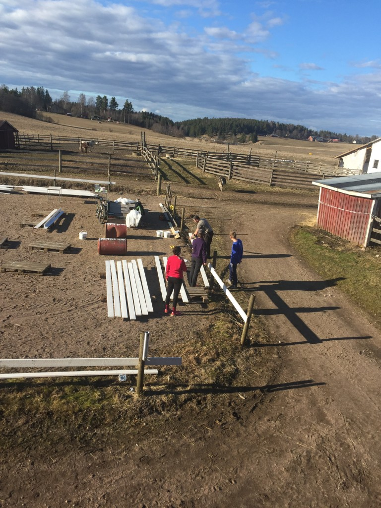 The biggest project we did was building a fence to create a riding ring. The group painted boards& posts, and then constructed the fence with directions from our hosts.